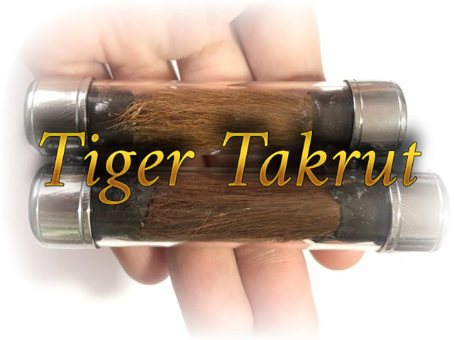 Tiger Takrut Sao Ha Edition 2553 BE LP Nong
