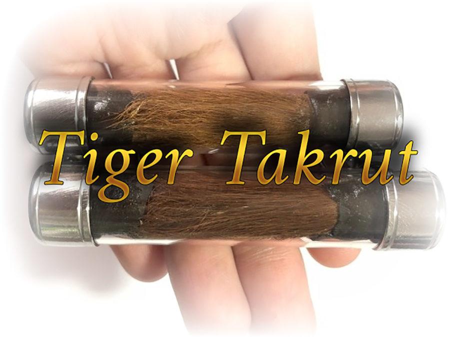 Tiger Takrut Sao Ha Edition 2553 BE LP Nong
